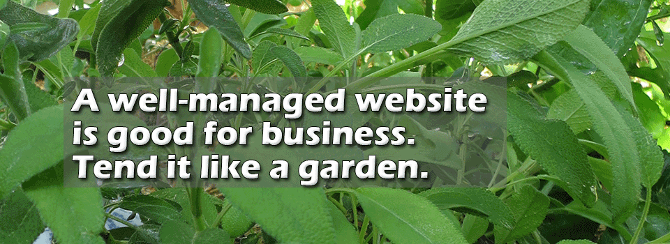 A well managed website is good for business. Tend it like a garden.